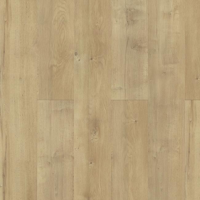 PlankIT Reed